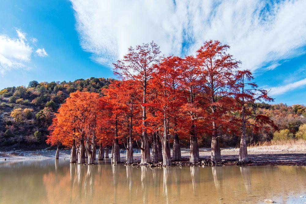 Вокруг Анапы с великолепным озером Абрау