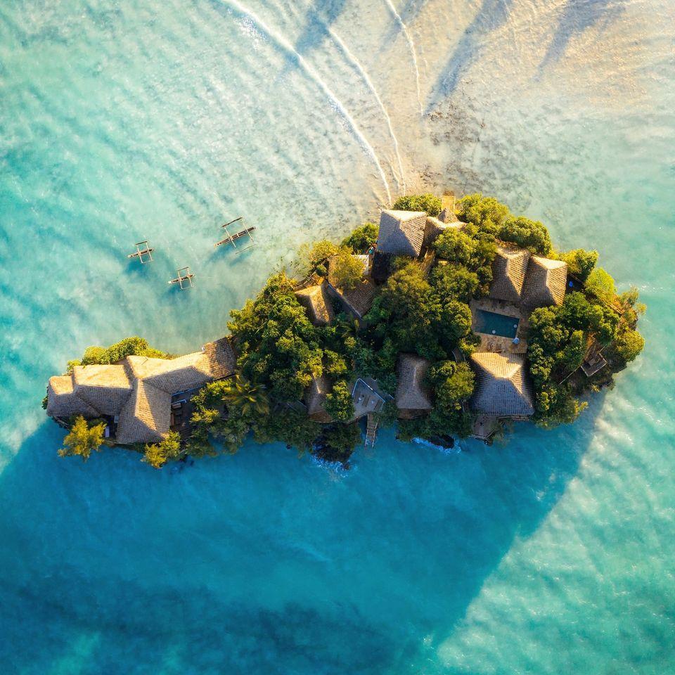 Дельфины + Лес Джозани + The Island