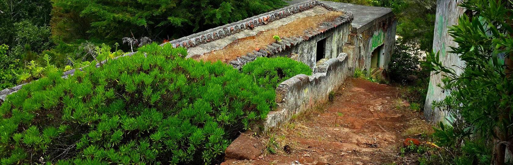 Путешествие к старому дому