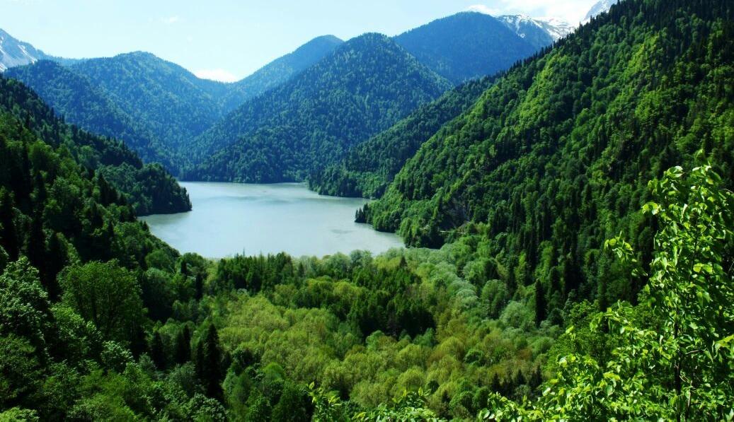 Экскурсия на озеро Рица индивидуально