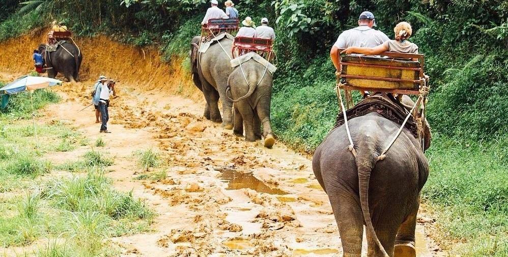 Два вида «транспорта»