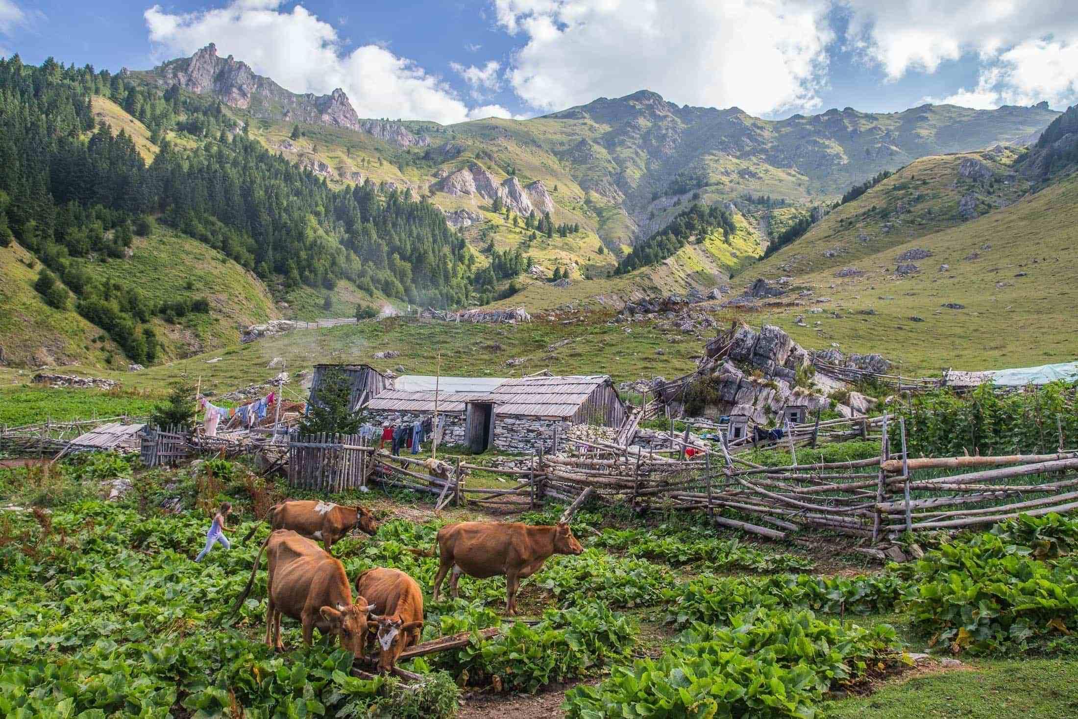 Албания — последняя загадка Европы