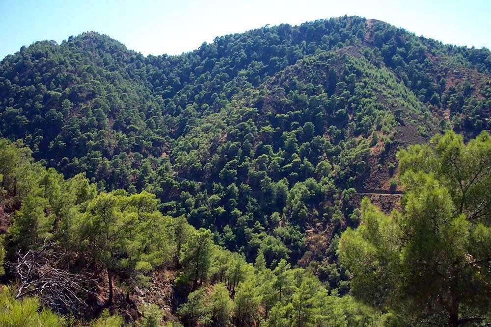 Зеленый Кипр, Киккос монастырь