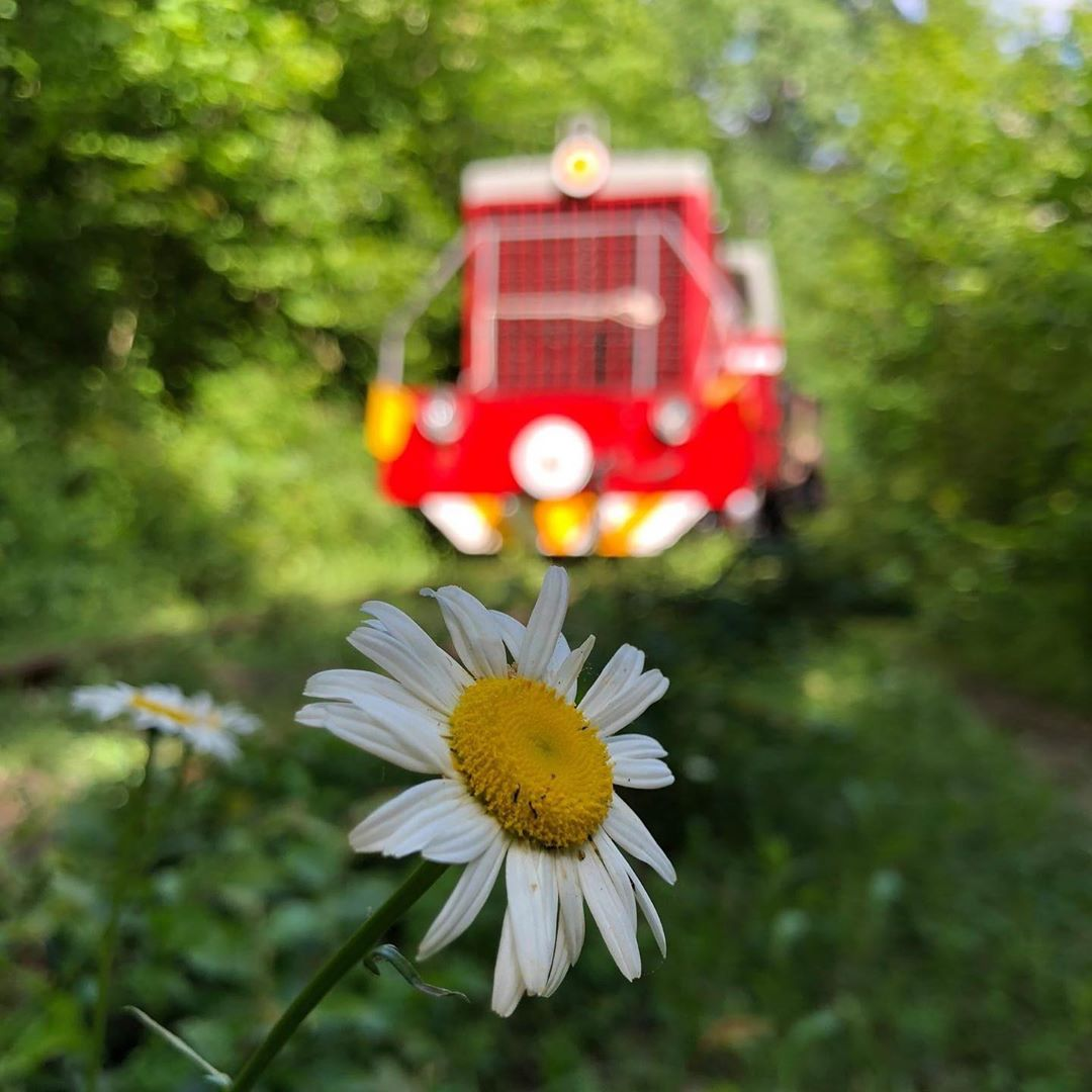 Тур на поезде, Шпалорез!