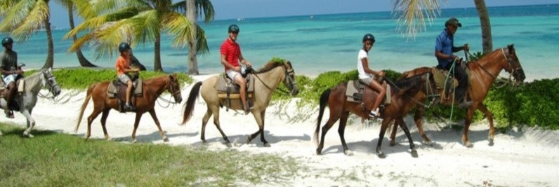 Прогулка на лошадях и голубая лагуна