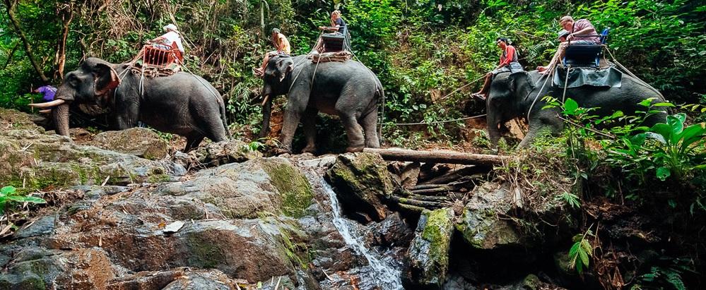Национальный парк Кхао Сок + озеро Чео Лан (1 или 2 дня)