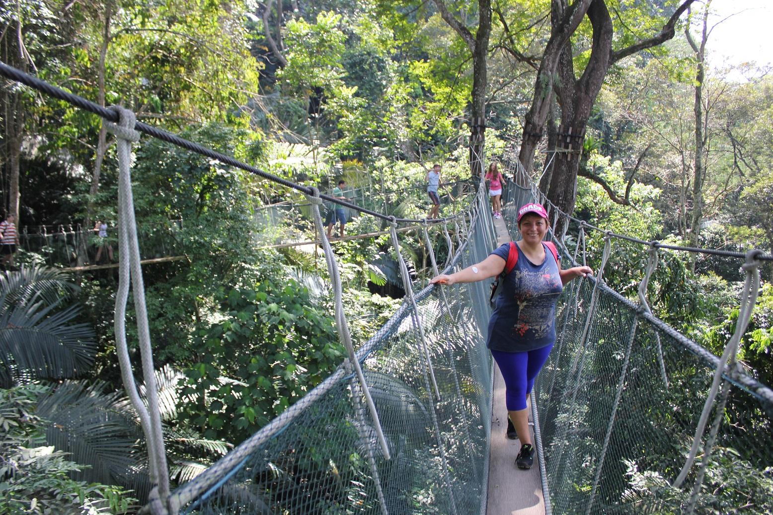 Городские джунгли Куала-Лумпура