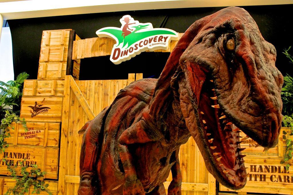 На часок к динозаврам в Dinoscovery