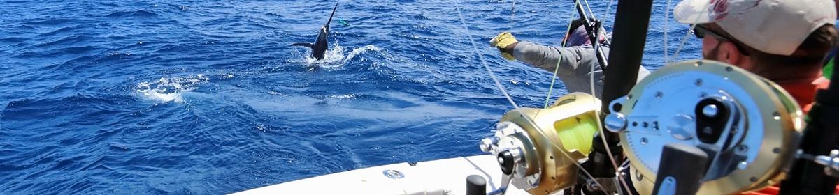 Глубоководная морская рыбалка