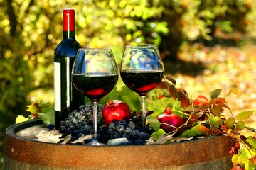 Винный тур, где реки вина и ужин в горах
