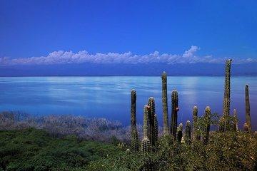 Двухдневная экскурсия на юг Доминиканы