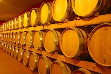 Посещение винодельческих фирм