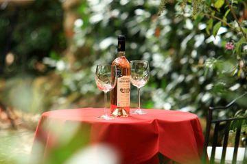 Дегустация вин Прованса