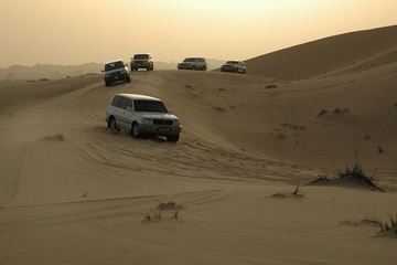 Вечернее пустынное сафари