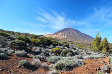 Поездка на вулкан Тейде