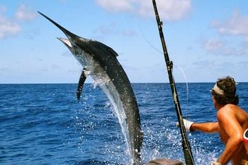 Троллинговая рыбалка на Тенерифе