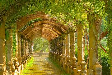Сады Альфабия - Сольер (Соллер) – Пуэрто де Соллер – Льюкский монастырь
