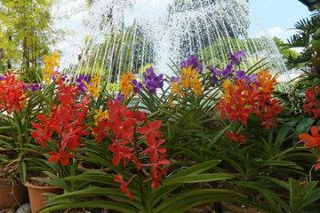 Сады и Парки Куала-Лумпура
