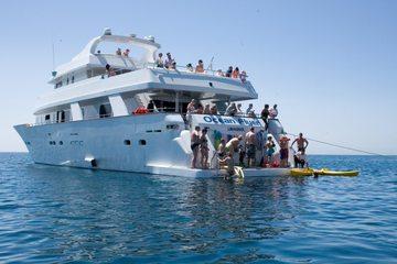 VIP круиз для взрослых на Ocean Flyer