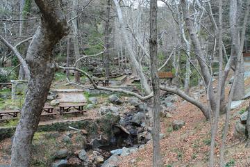 Пикник в горах для взрослых и детей