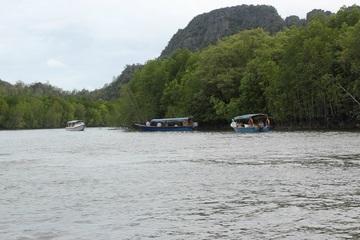 Великолепный тур - экспедиция в мангровые джунгли