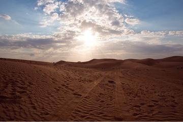 Индивидуальное вечернее пустынное сафари