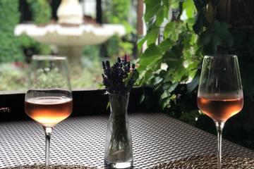Винный тур: три центра винного туризма и бархатное море