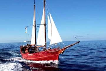 Морская прогулка на пиратском корабле PETER PAN