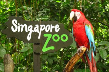 Зоопарк Cингапура