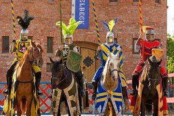 Конно-рыцарское шоу в замке Нессельбек
