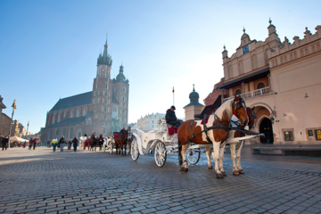 «Королевский тракт»: по Старому городу и Вавельскому холму