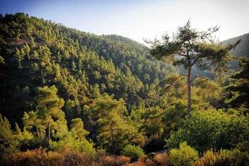 Неизвестный и прекрасный Кипр