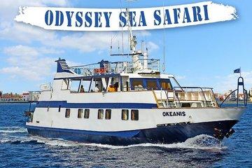 Морское сафари «Одиссея»