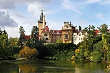 Замок Пругонице и пивзавод Козел